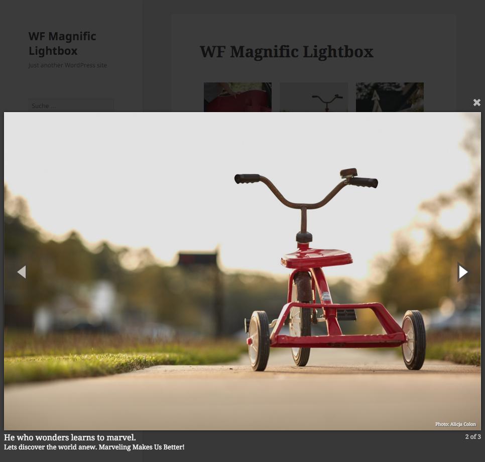 WordPress 响应式图片灯箱插件 WF Magnific Lightbox