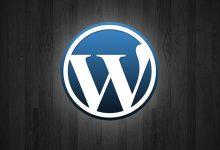 为WordPress主题顶部添加一个加载进度条-轻语博客